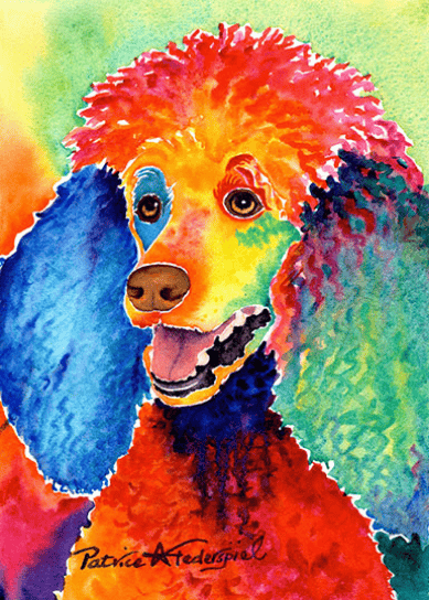 Shave Ice Poodle